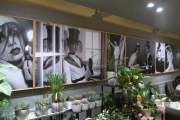 Digitrükk - Trükitud fotokleebised Levieri kohvikusse Stockmanni kaubamajas 1